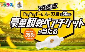 福岡ソフトバンクホークス戦 豪華観戦ペアチケット