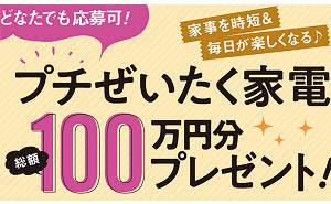 「プチぜいたく家電」総額100万円分