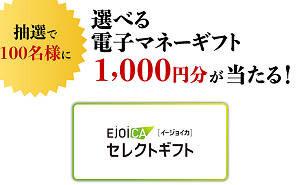 電子マネーギフト1,000円分