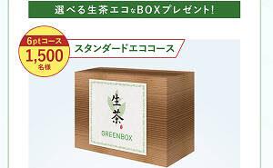 選べる生茶エコなBOX