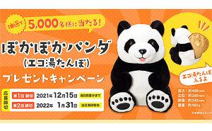 ぽかぽかパンダ(湯たんぽ)